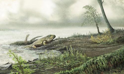 Siêu vi khuẩn theo động vật bò lên cạn 450 triệu năm trước. Ảnh: .