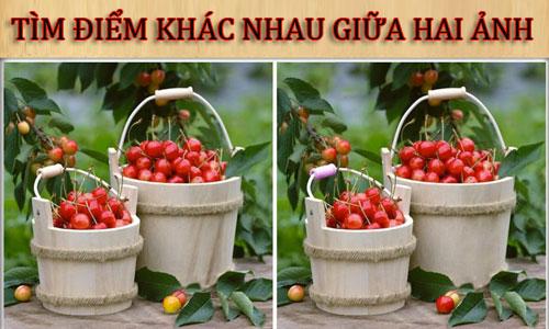 tai-sao-nguoi-dep-xu-han-nguong-chin-mat-tren-san-khau-2