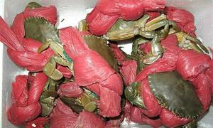 Mua 10 kg cua biển được 6 kg dây buộc