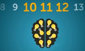 Hoạt động của não bộ trong 24 giờ