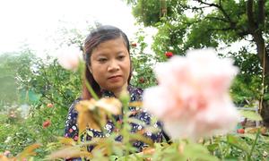 Bỏ công việc ổn định, cô gái khởi nghiệp với nghề trồng hoa
