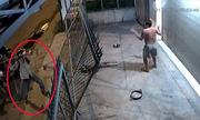 Chủ nhà giơ tay đầu hàng vì bị 3 tên trộm chó chĩa súng điện