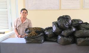 Lô cần sa khô trị giá hàng tỷ đồng ở biên giới Campuchia