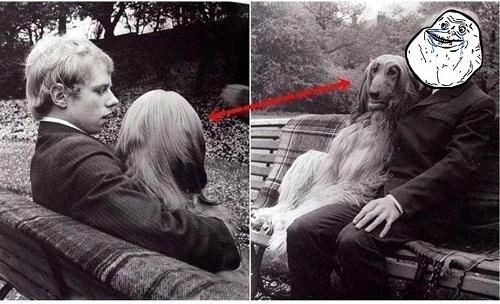 Người yêu không có nhưng chó phải có một con.