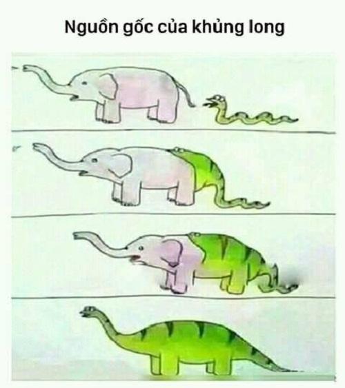 Nguồn gốc của loài khủng long.