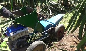 Máy băm dây thanh long của nông dân Bình Thuận