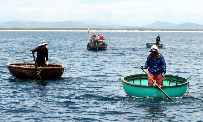 Lặn sâu 7m hái rong mơ ở Quảng Nam
