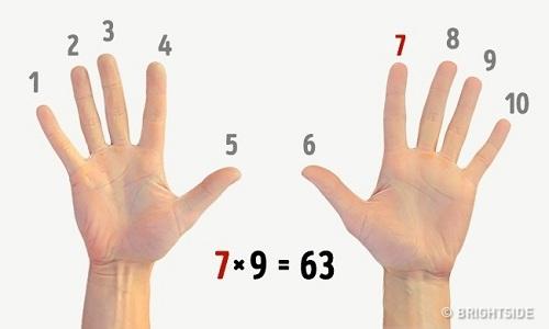 5-meo-huu-ich-trong-doi-song-3