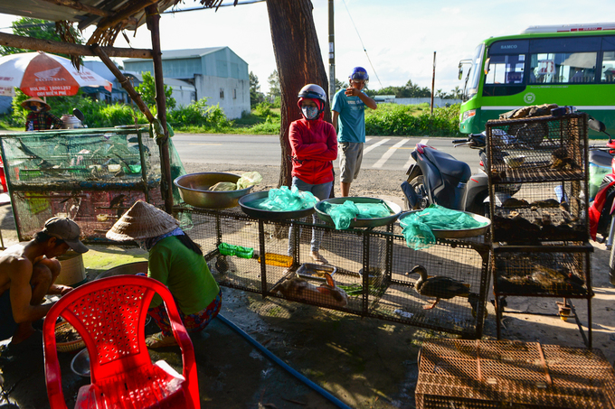 Con đường chuyên bán rắn, chuột ở ngoại ô Sài Gòn