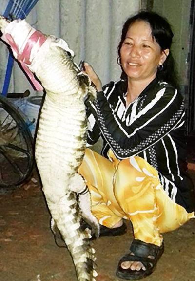 Con cá sấu đã bị người dân làm thịt. Ảnh: P.H