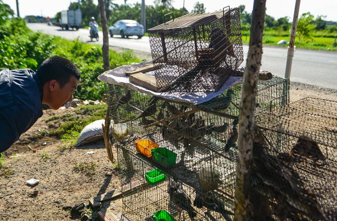 Con đường chuyên bán rắn, chuột cho \'dân nhậu\' Sài Gòn