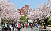 Du học Hàn Quốc với TOEIC 755
