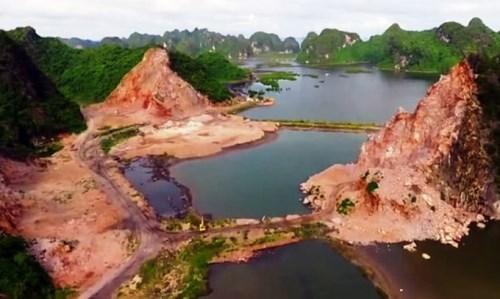 Trồng cây để hoàn nguyên môi trường khu vực bạt núi đá ở vịnh Hạ Long