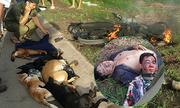 Trộm 7 con chó bị dân đánh hội đồng, đốt xe máy