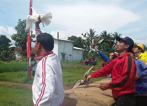 chim-bo-cau-lam-tang-ty-le-ly-hon-o-indonesia