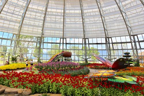 Với chuỗi năm nhà kính và ba khu vườn mở ngoài trời, Đồi Vạn Hoa đã mở ra một thế giới thiên nhiên kỳ thú, rực rỡ sắc màu đến từ các châu lục. Các bộ sưu tập được quy hoạch theo từng vùng khí hậu từ ôn đới, nhiệt đới đến hoang mạc châu Phi theo kết cấu liên hoàn Vườn Việt; Vườn Nhật; Vườn Âu, Vườn Phi&