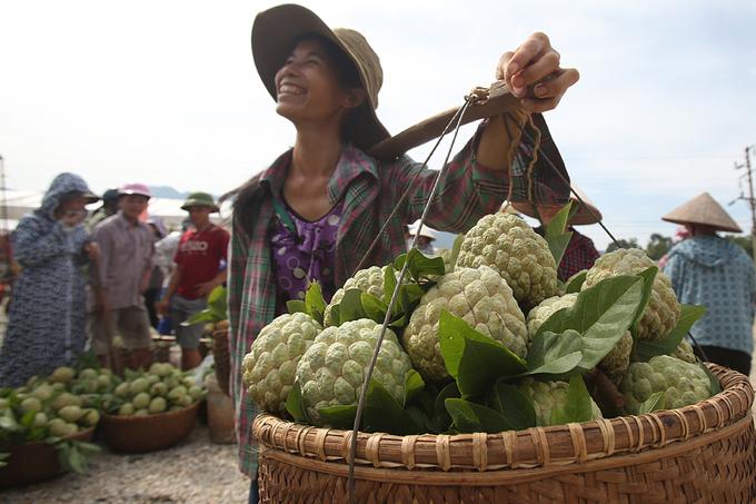 Na 1 kg mỗi trái ở chợ đầu mối Xứ Lạng