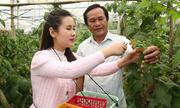 Kinh nghiệm kiếm tiền tỷ của nông dân Lâm Đồng