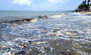 Rác tràn ngập bãi biển Mũi Né, du khách không dám tắm