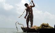 Dùng vỏ sò đuổi cá bống cát vào lưới trên hồ Trị An