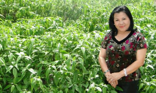 Hành trình 8 năm mang trà hoàn ngọc ra thế giới của nữ CEO