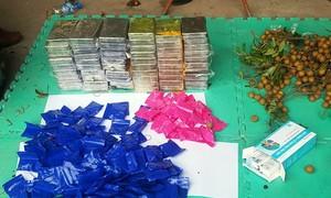 Gần 60 bánh heroin ngụy trang trong thùng hoa quả