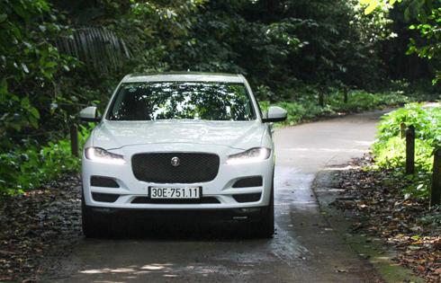 jaguar-f-pace-xe-sang-gam-cao-moi-cho-khach-viet