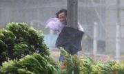 Bão lớn, Hong Kong nâng cảnh báo mức cao nhất