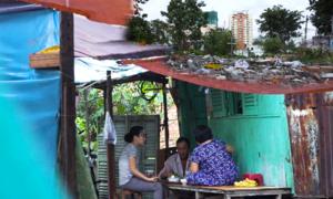 Cuộc sống hoang tàn ở cù lao Nguyễn Kiệu giữa Sài Gòn