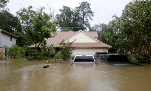 Nhà và xe ngập trong nước lũ do bão Harvey. Ảnh: Reuters.
