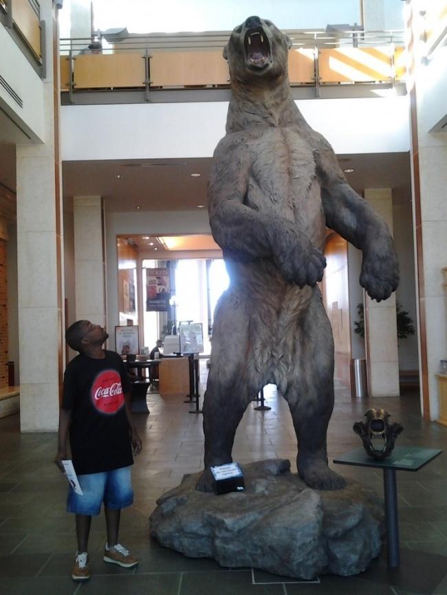 Những sinh vật lớn nhất từng tồn tại trên Trái Đất