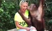 Người đẹp bối rối vì bị cưỡng hôn trong sở thú