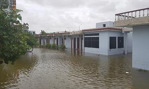 Hơn 100 ki-ốt ở ven biển Nam Định đổ sập trong bão