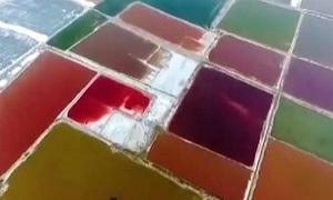 Thủ phạm khiến 'Biển Chết Trung Quốc' đổi màu cầu vồng