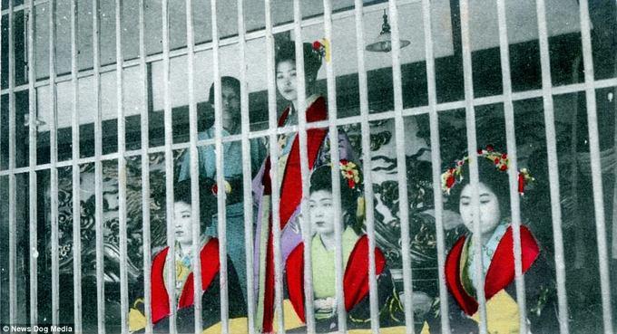 Kỹ nữ trưng bày trong lồng ở Nhật thời xưa