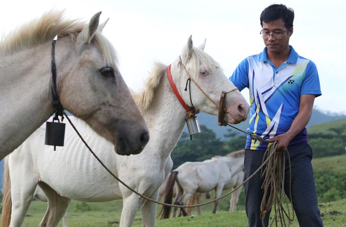 'Vương quốc' ngựa bạch lớn nhất Việt Nam