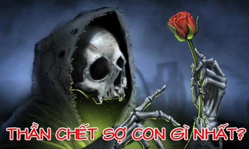 than-chet-so-con-gi-nhat