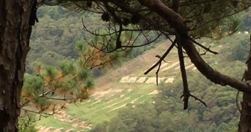 Một trường bắn của quân đội tại huyện Cheorwon, tỉnh Gangwon. Ảnh: Yonhap.