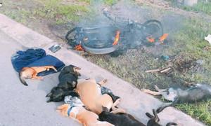 Những kiểu trừng phạt của dân làng với kẻ trộm chó