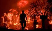 Cháy rừng biến vùng sản xuất rượu vang của California thành tro