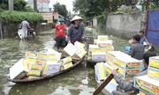 Thuyền mì tôm len lỏi ngõ xóm vùng vỡ đê bao Hà Nội