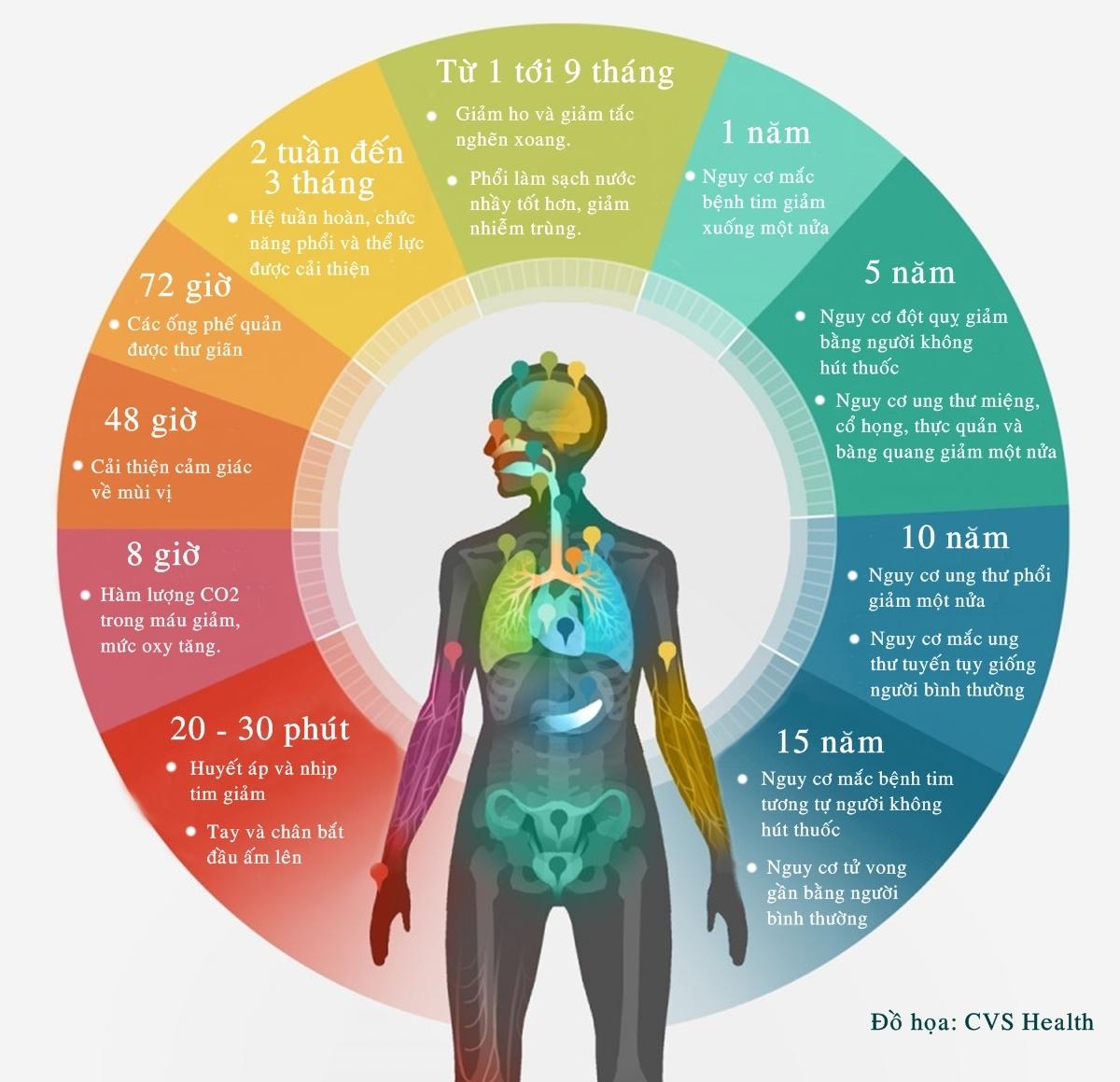 Tác động của bỏ hút thuốc lá đến cơ thể