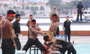 Cảnh sát cơ động phục vụ APEC trình diễn khí công