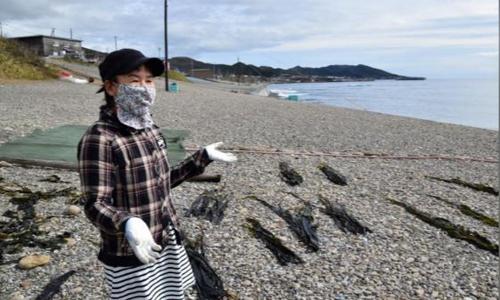 Một người dân ở thị trân Erimo, Hokkaido, Nhật Bản ngày 12/10. Ảnh: Reuters.