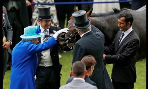 Nữ hoàng Anh vỗ về ngựa Dartmouth. Ảnh: YouTube.
