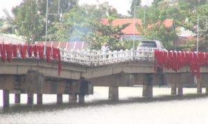 Cầu 'võng' ở Quảng Nam