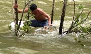 Người dân Khánh Hòa lao xuống hồ xả lũ bắt cá 'khủng'
