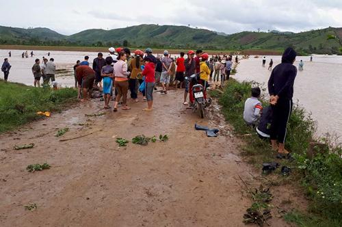 Người dân Đăk Lăk đổ xô ra suối bắt cá tầm sau bão Damrey