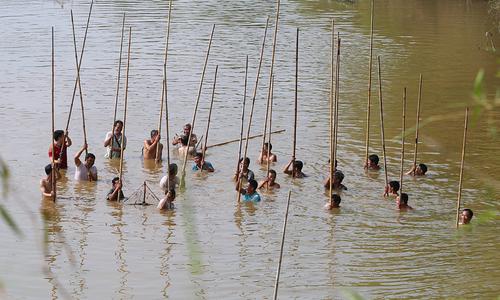 Hàng trăm người 'dập' cá trên sông ngoại thành Hà Nội