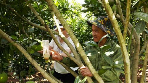 Ông KhởiSinh năm 1970 tại Hưng Yên, lên Sơn La khai hoang năm 1986.